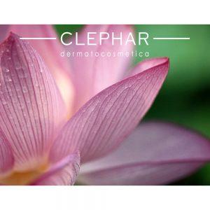 Lees meer over het artikel Lotus Treatment